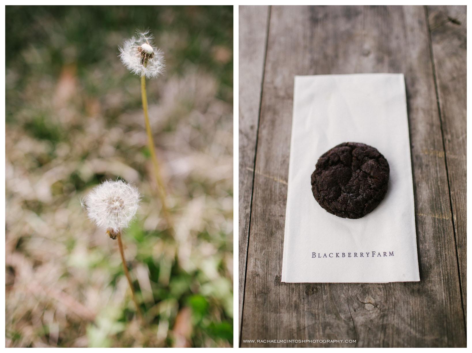 Blackberry Farm - Wedding Venue 77.jpg