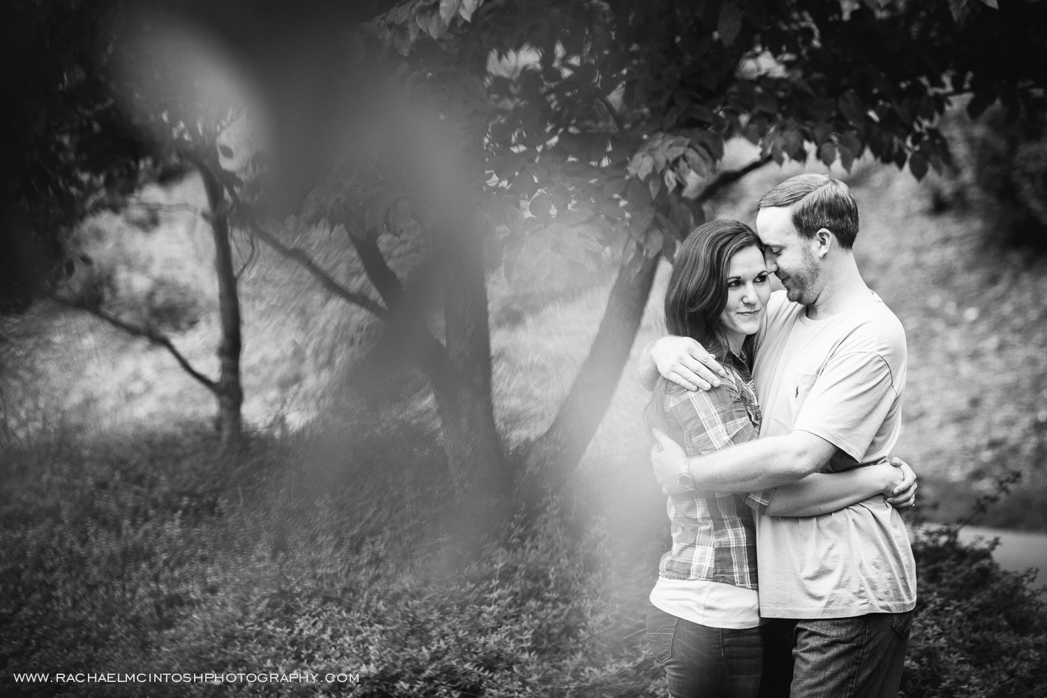 Asheville Wedding Photographer -2014 in review-37.jpg