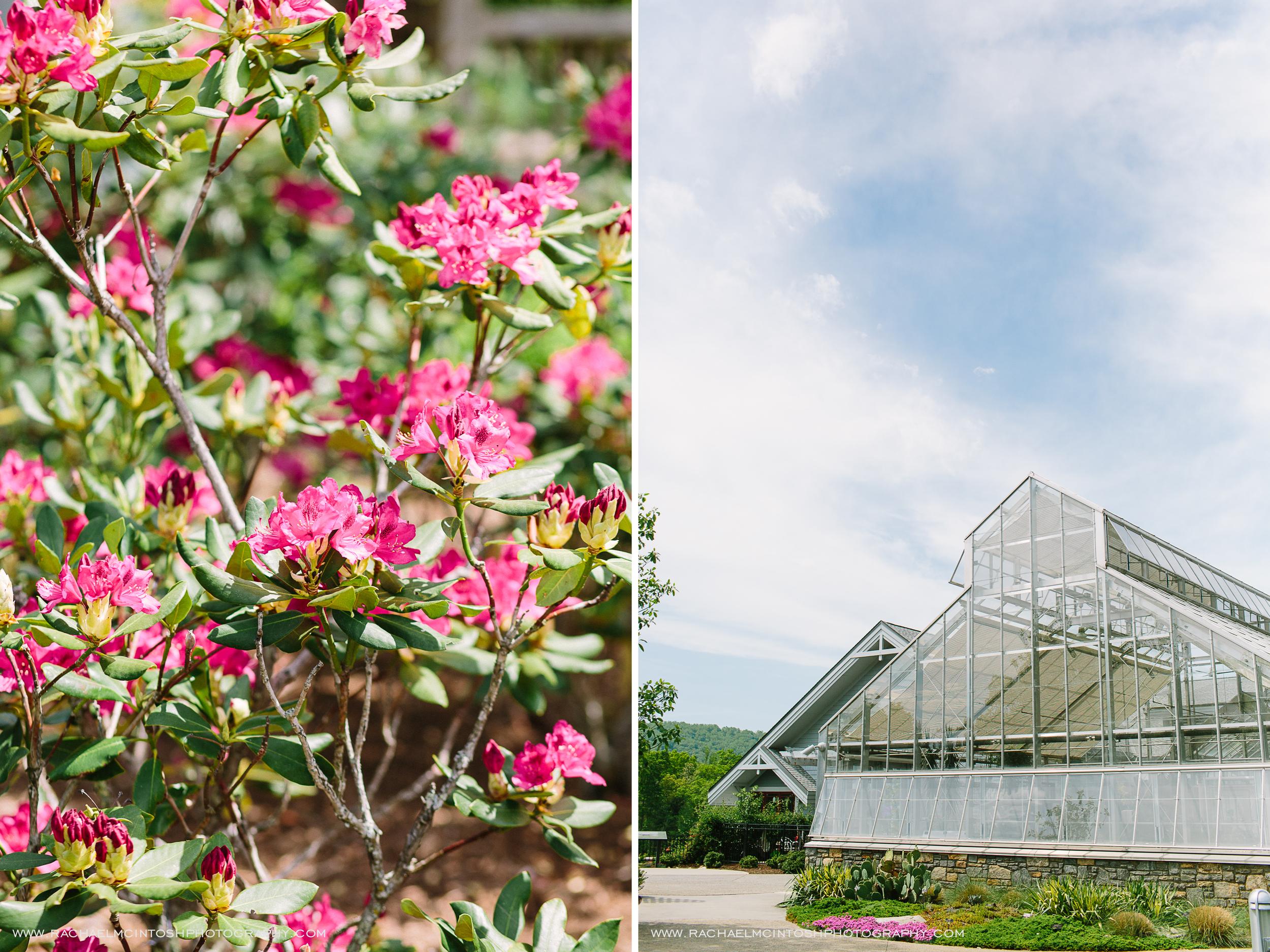 NC-Arboretum-Wedding-Asheville-61-01.jpg