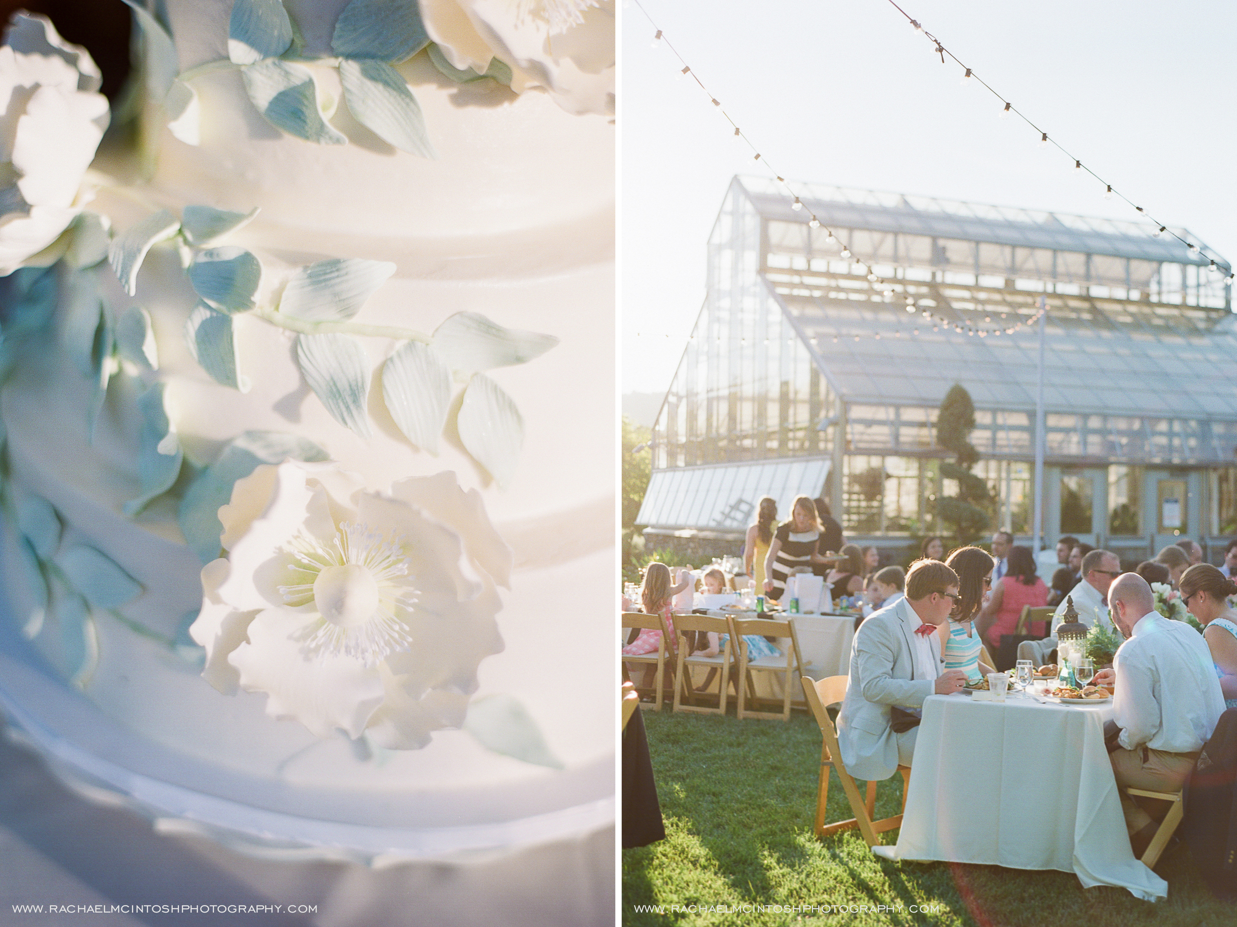 NC-Arboretum-Wedding-Asheville-66.jpg
