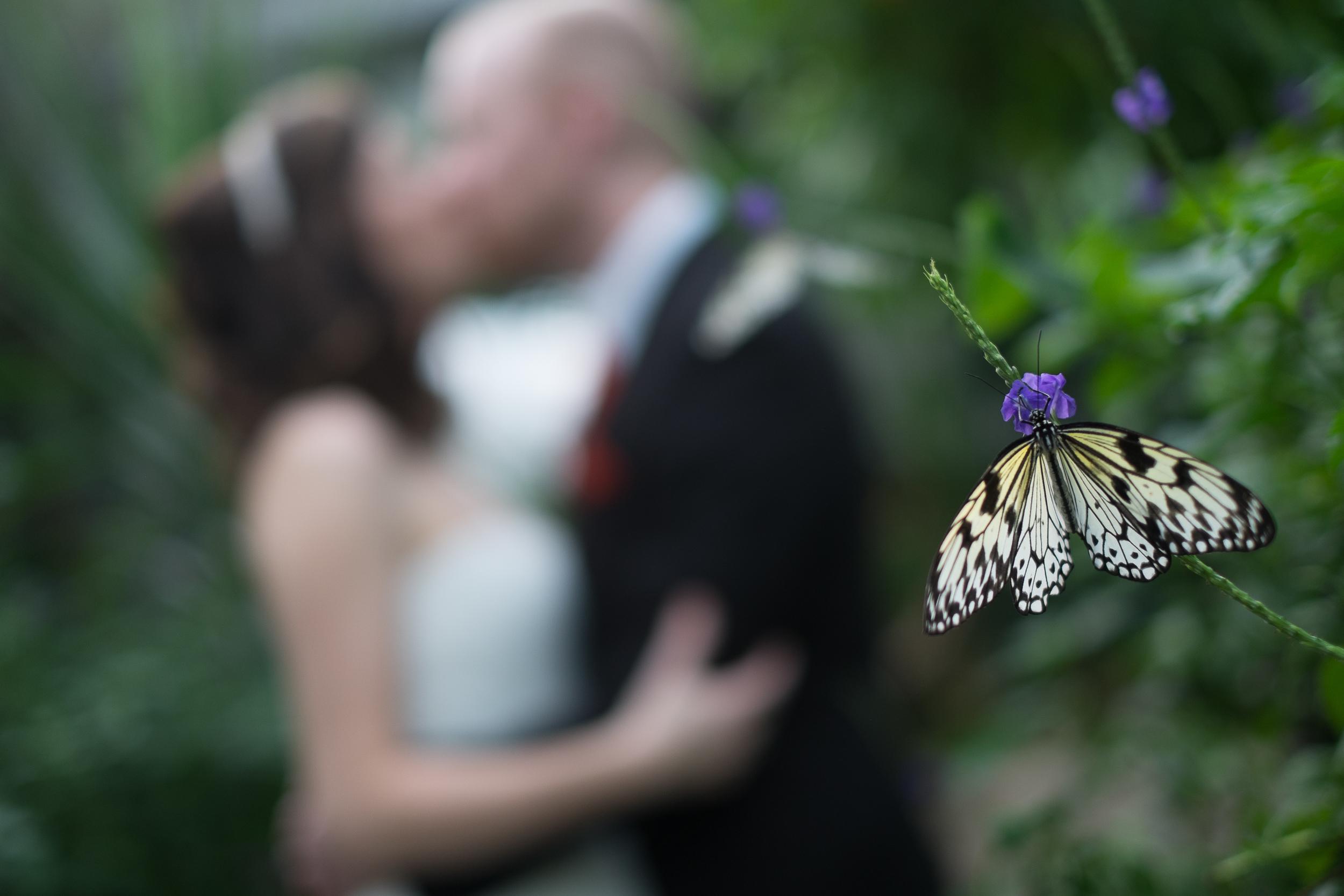 fuji-xpro-1-wedding-007.jpg
