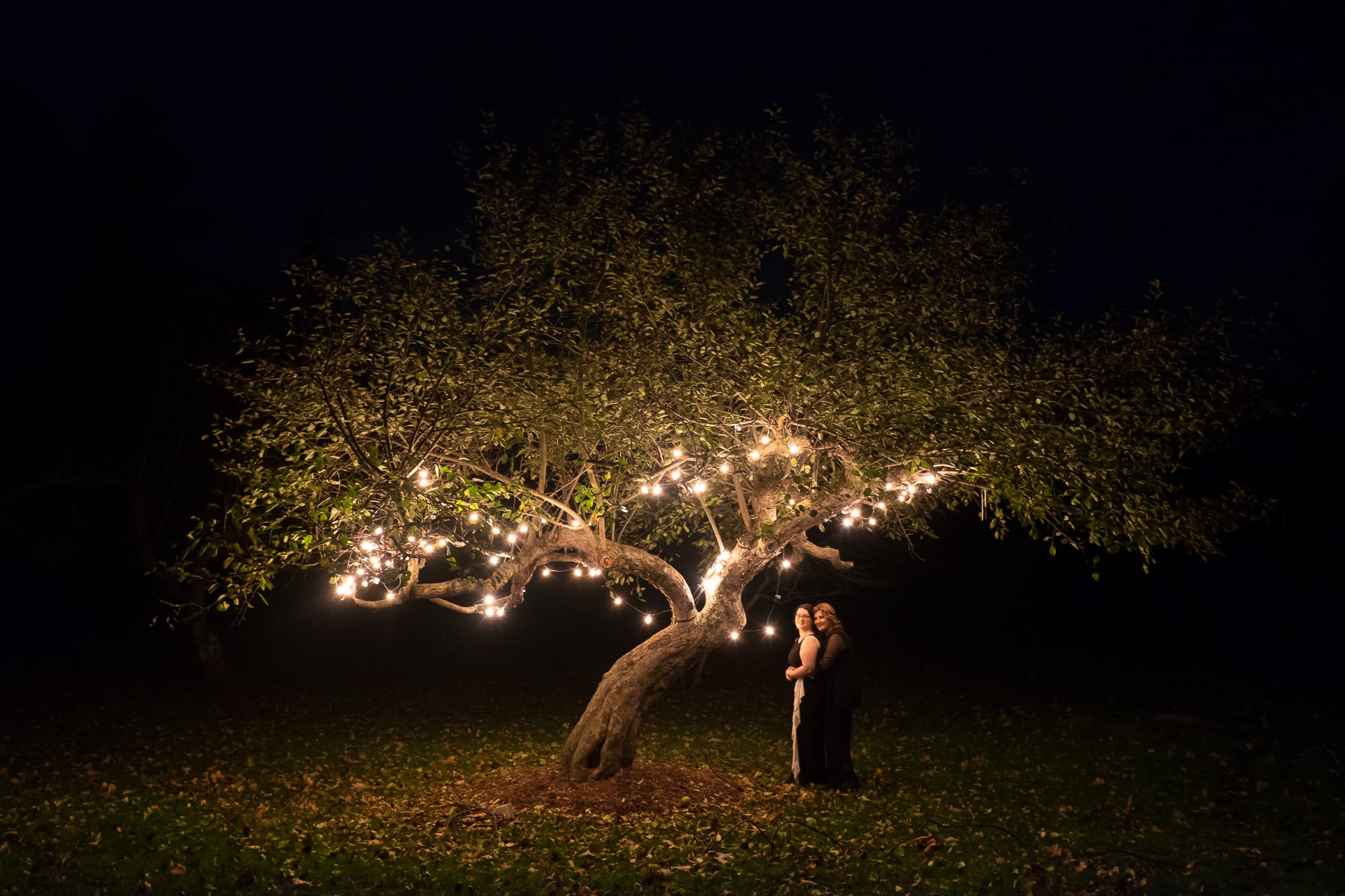 Renee + Senem pose for a nighttime portrait during their wedding reception at Langdon Hall.