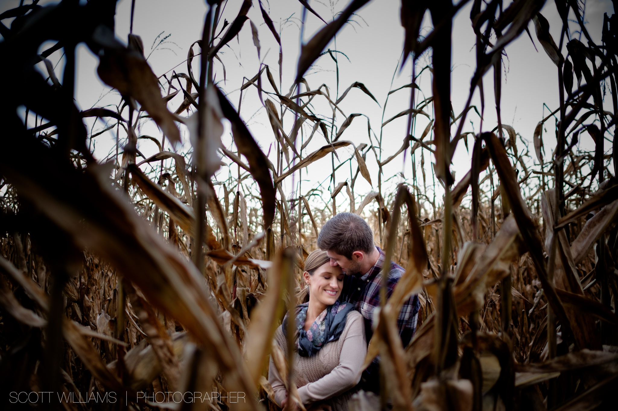 A photograph from Sabrina + Zach's sunset engagement session on a farm in Southwestern Ontario.