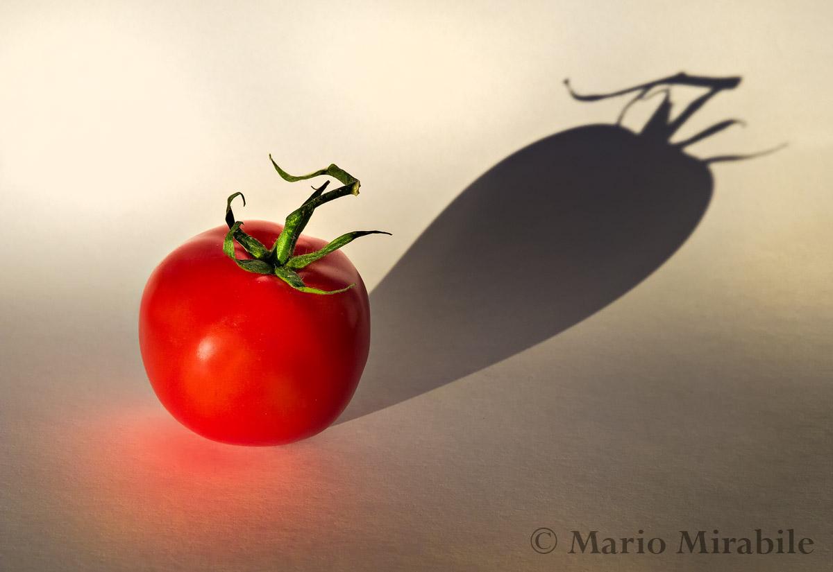 20140703 Tomatoe (5) copy.jpg