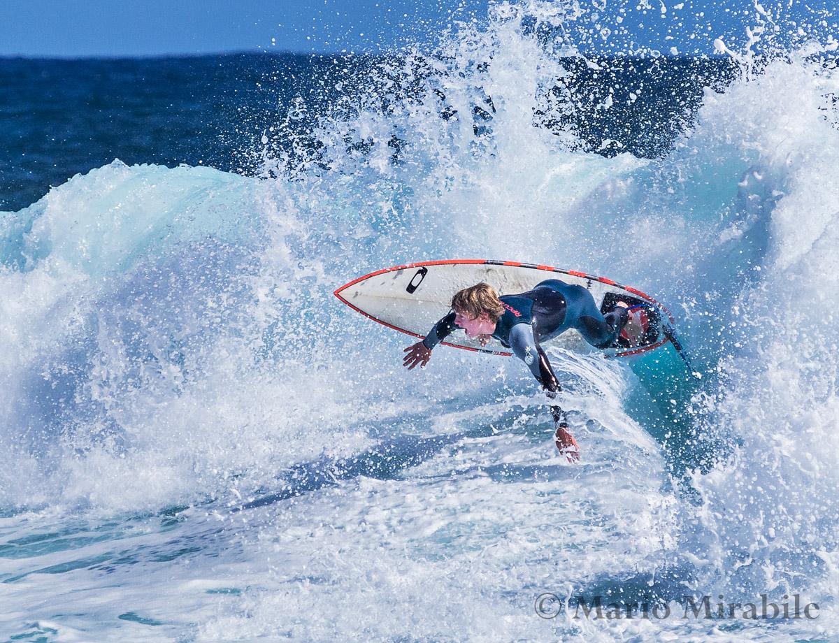 20141109  Surfs up (4) copy.jpg