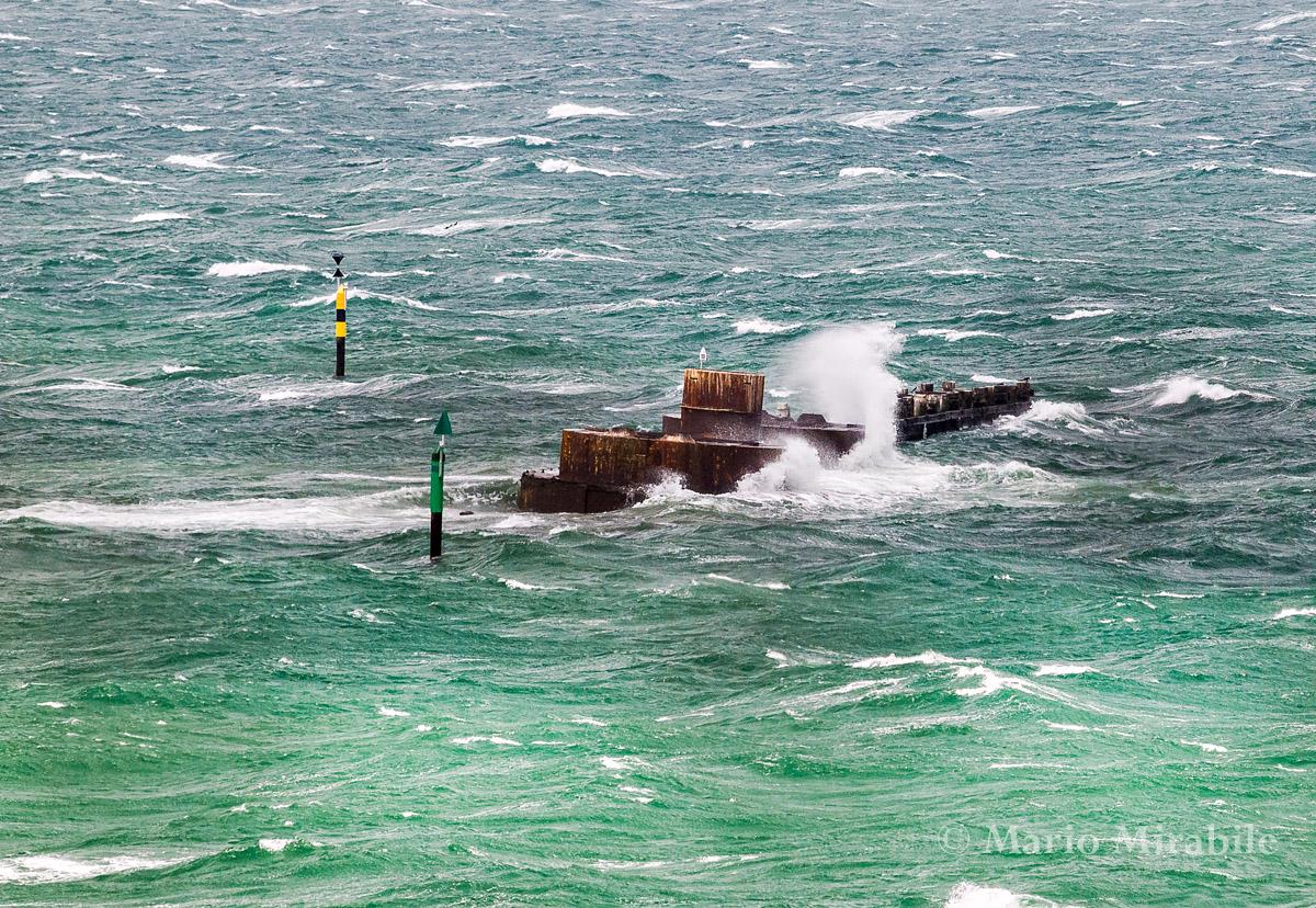 20141229  Windy on the bay (4) copy.jpg