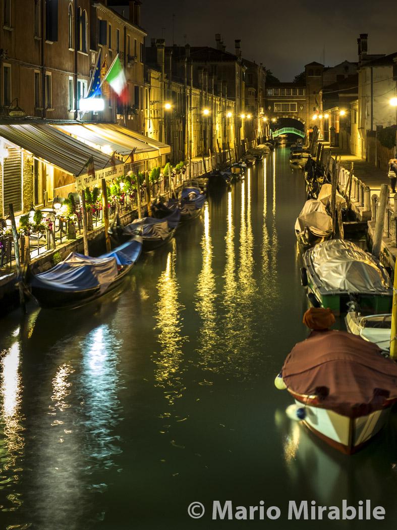 20160510 Venice (91) copy.jpg