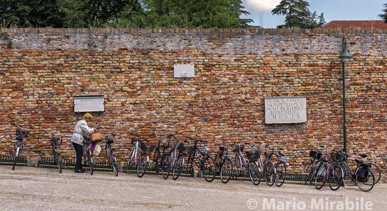 Walls of Treviso1 copy.jpg