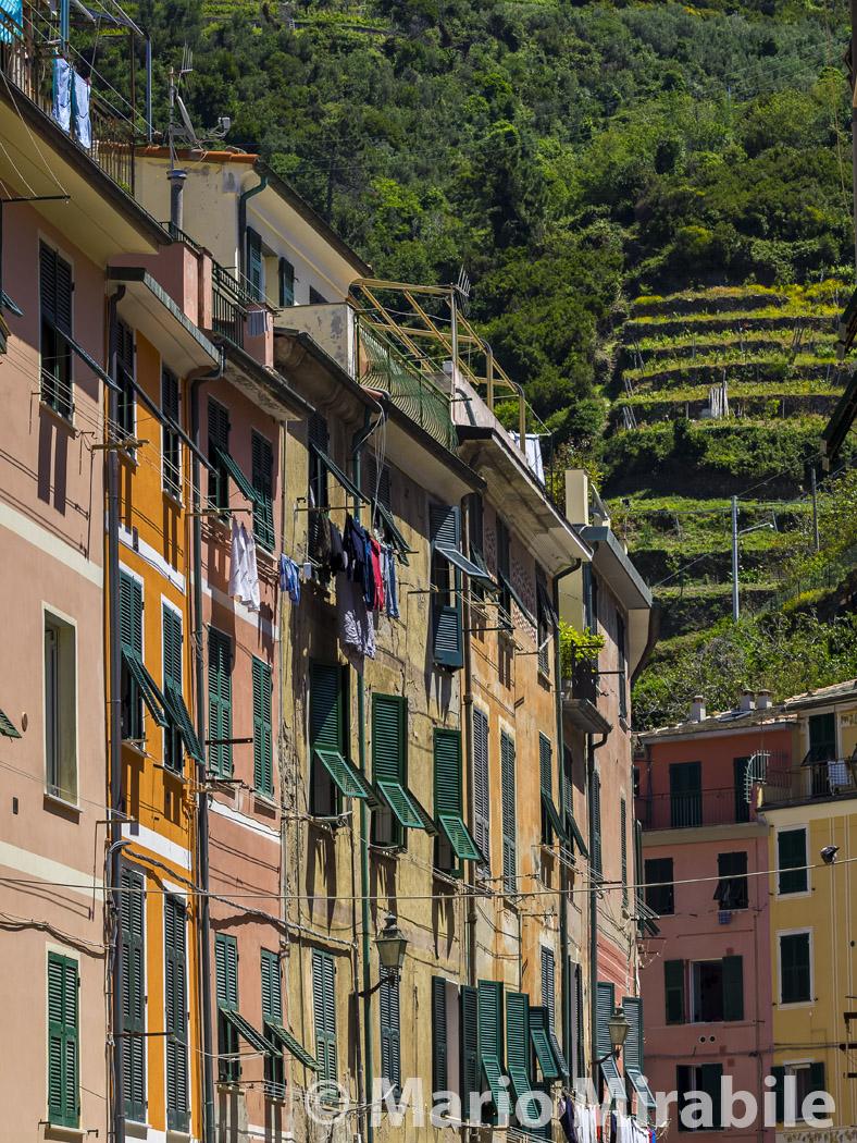 20160521 Cinque Terre (219) copy.jpg