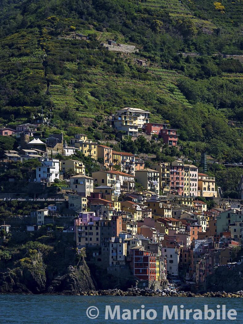 20160521 Cinque Terre (149) copy.jpg