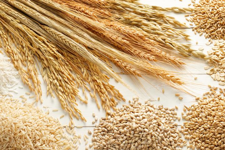 Grain_image.jpg