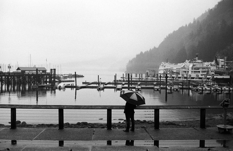 Lighthouse-Park-Vancouver-17.jpg