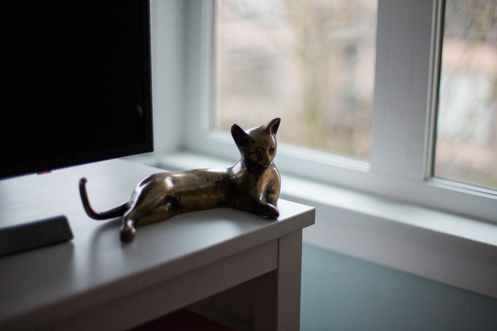 Tallie The Cat-12.jpg