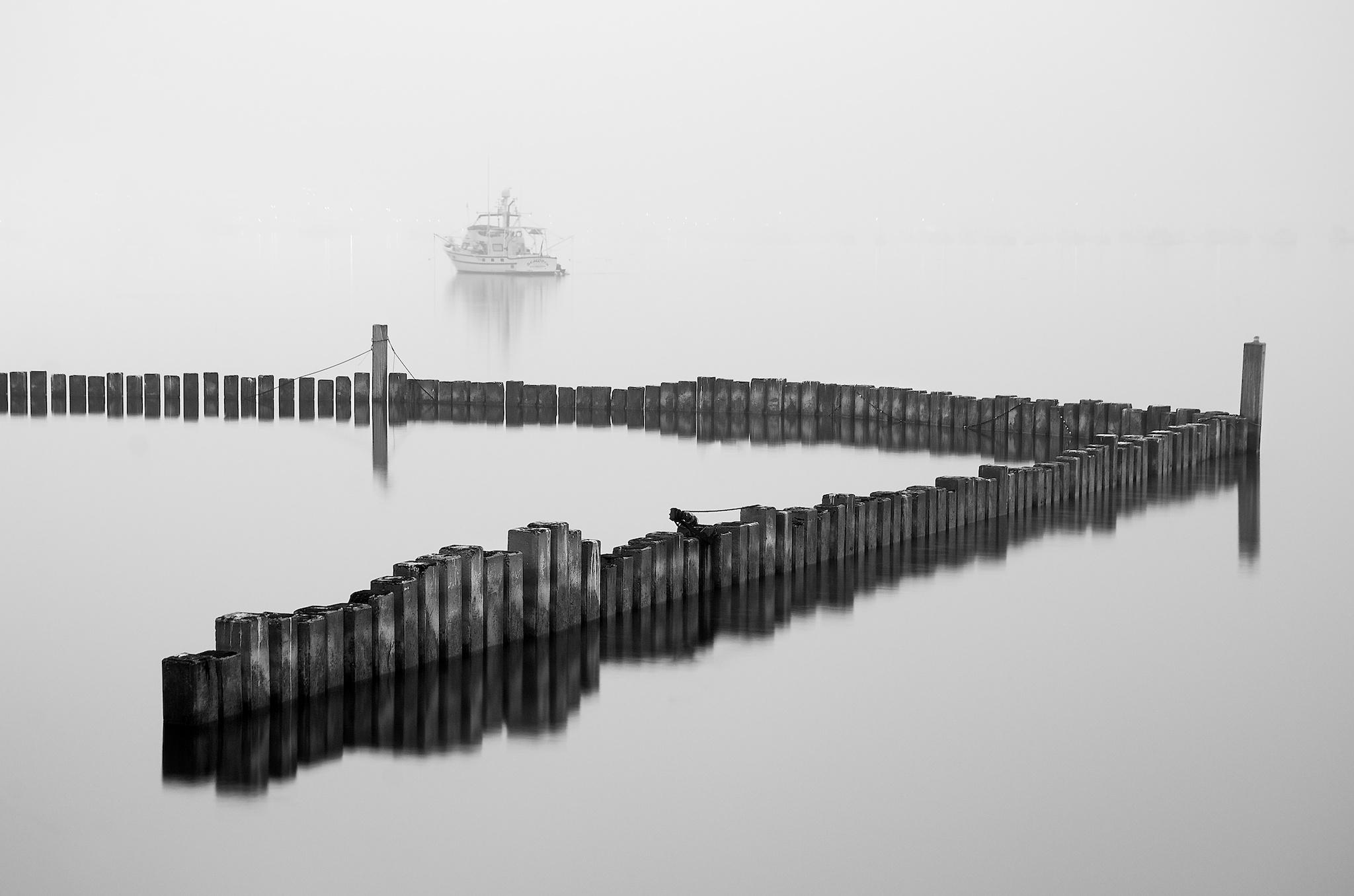 Pilings In Fog  |  Black & White Gallery