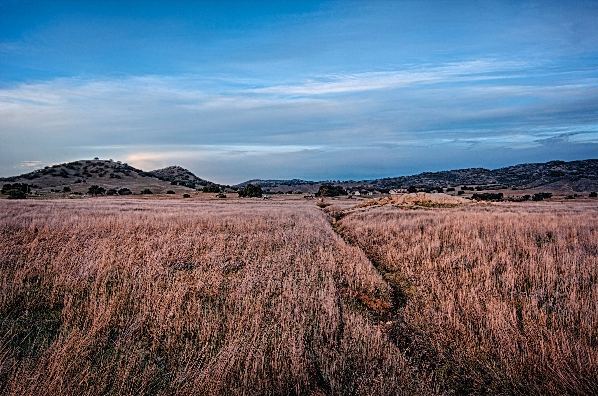 Grassy Meadow, Santa Ysabel, California