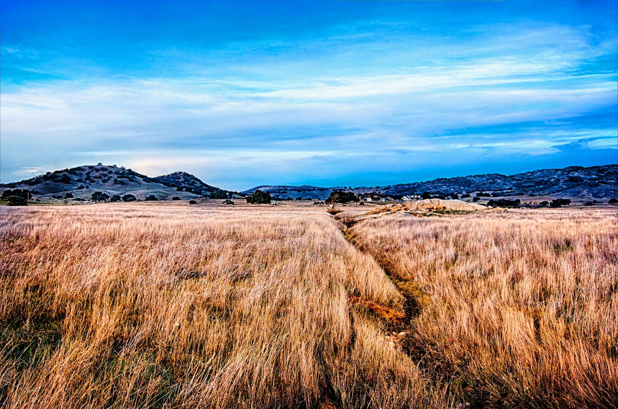 The Grassy Meadow, Santa Ysabel, California