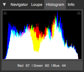 The Perfect Photo Suite Histogram
