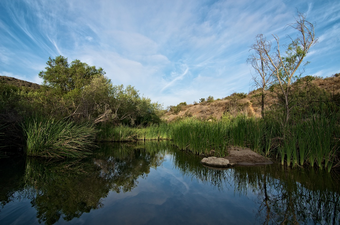 Reflections in Penasquitos Canyon, San Diego