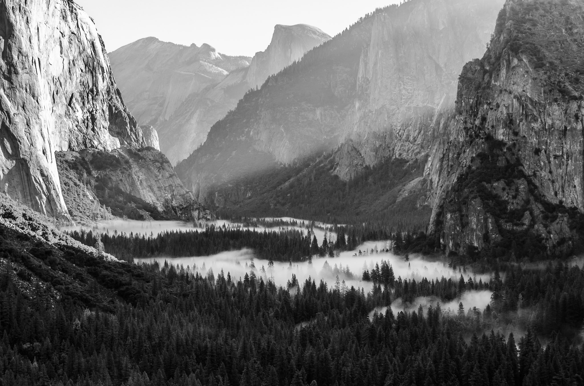 Morning At Tunnel View
