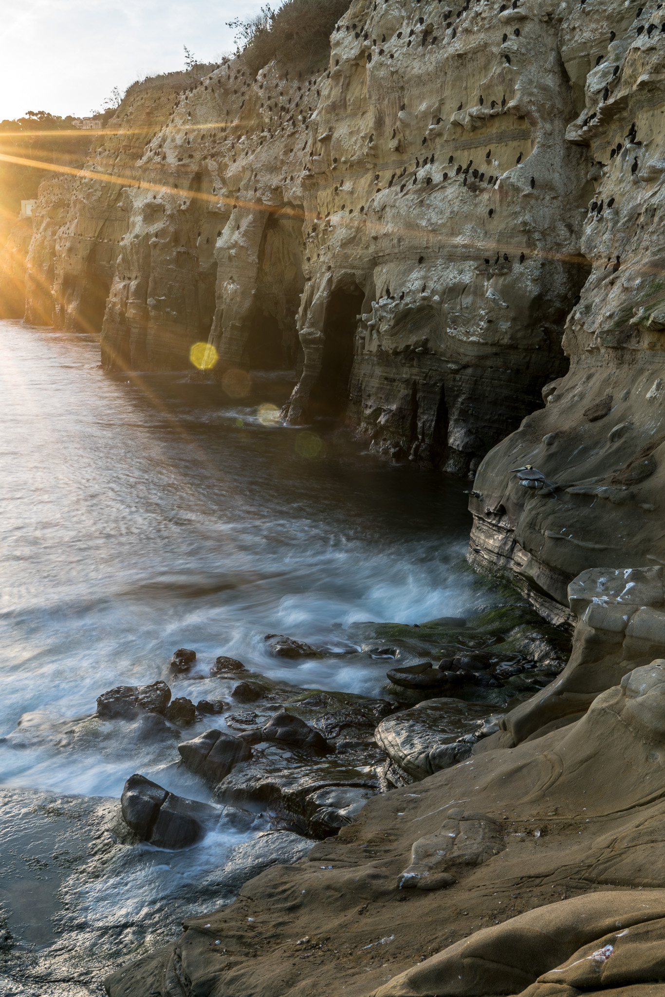 Sea Caves, La Jolla