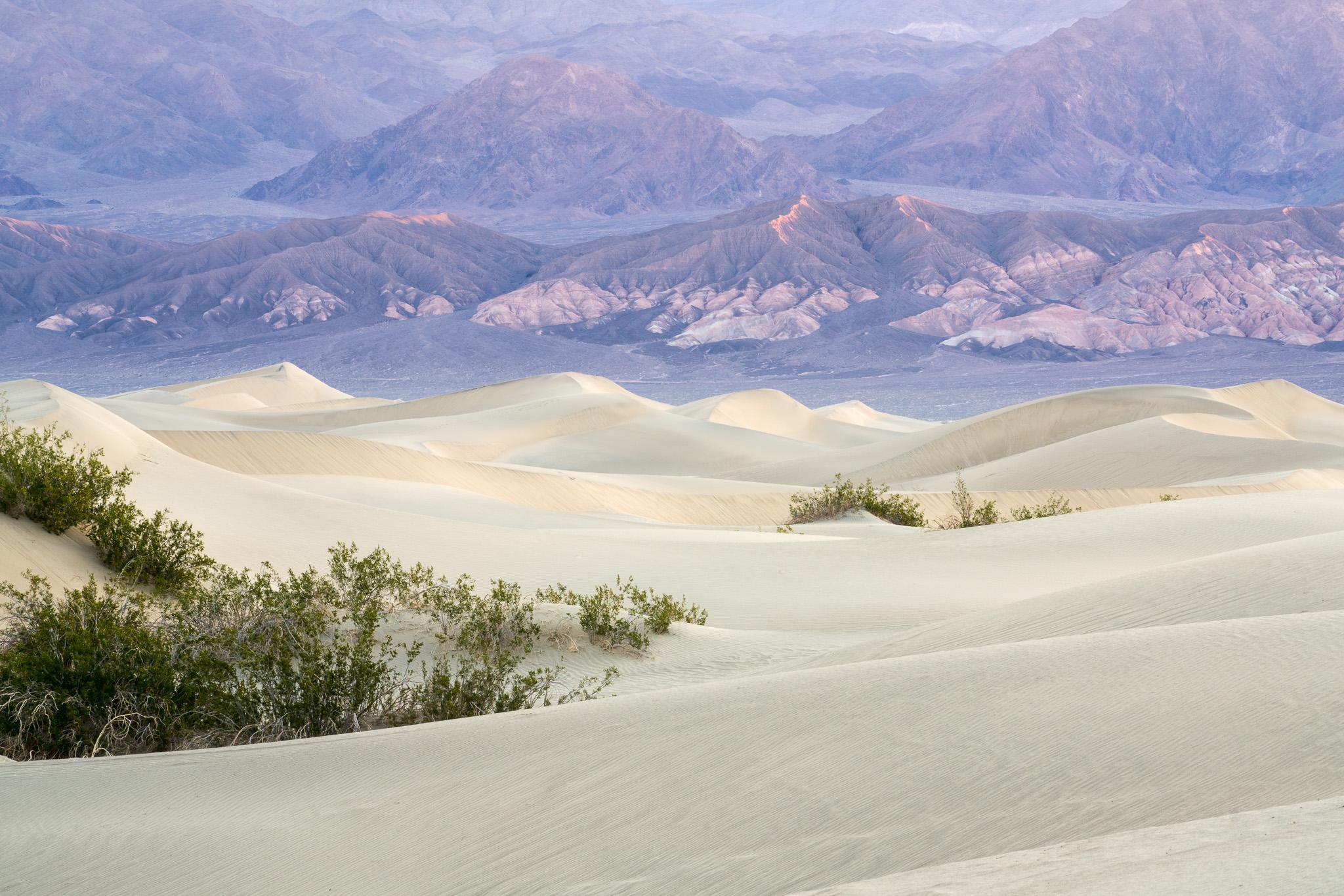 Mesquite Dunes Before Sunrise