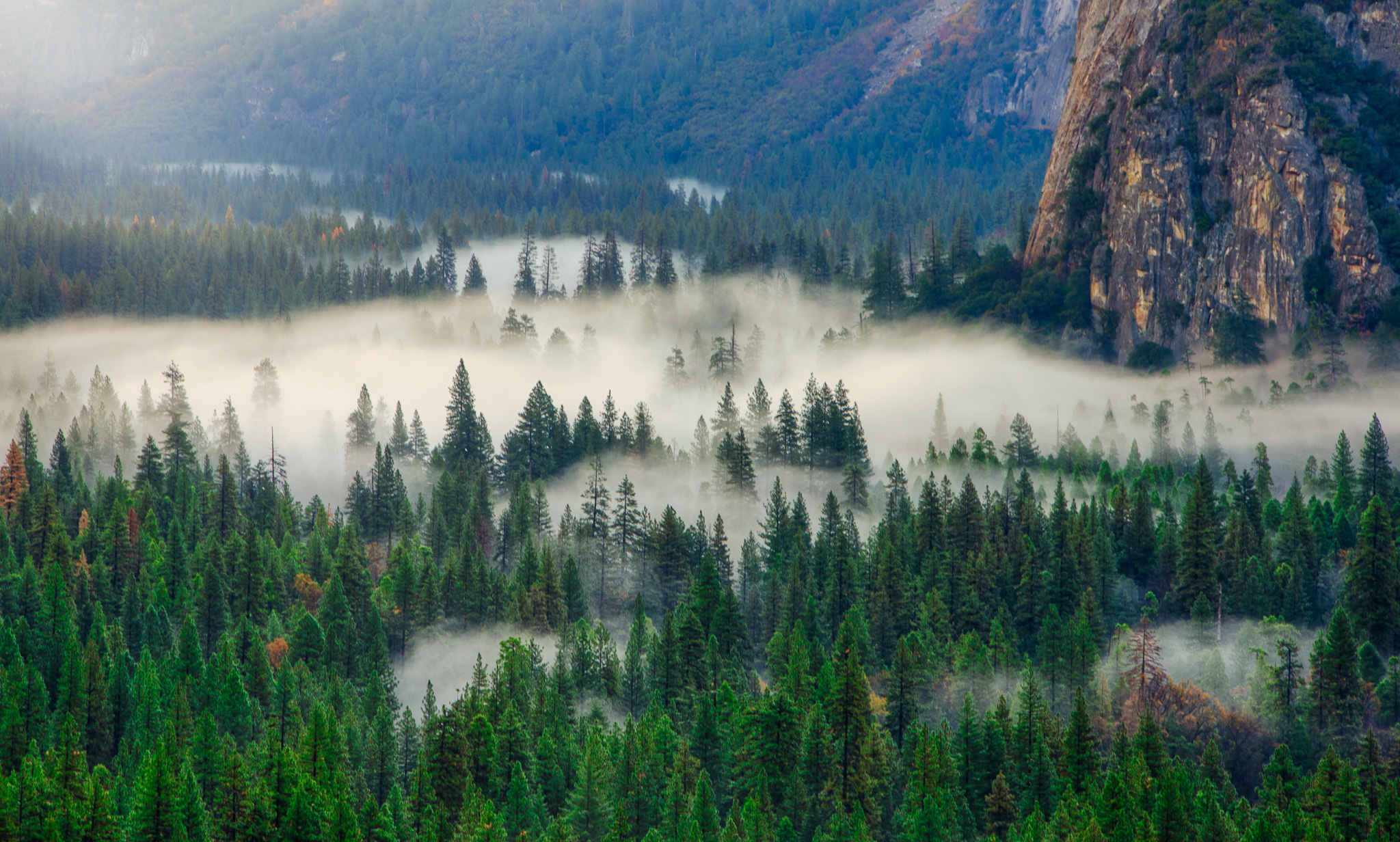 Fog In Tunnel View, Yosemite National Park