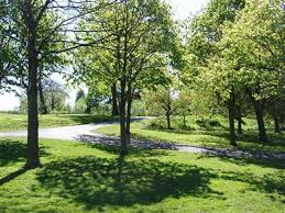 Ormeau Park (picture of meeting point)