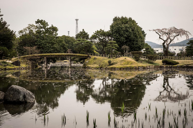 I giardini fioriti di Tsuyama