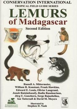 lemurs-of-madagascar.jpg
