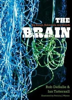 the-brain-big-bangs-behaviors-and-beliefs.jpg
