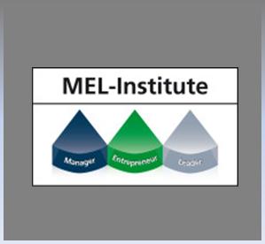Grafikkonzeption und Umsetzung der Website  www.mel-institute.com  | Social Media