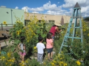 learning garden.jpg