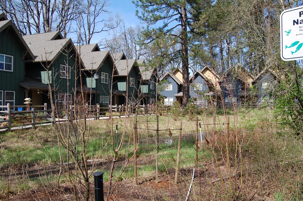 REACH-affordable-housing.jpg