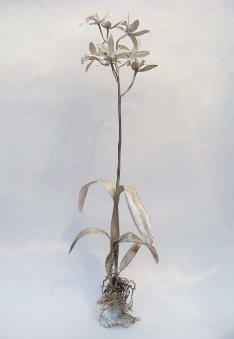 Nic Bladen-Laelia cattleya (sterling silver).jpg