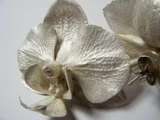 Nic Bladen-phalaenopsis earrings (studs).jpg