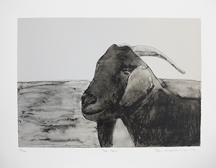 Sam-Nhlengethwa---The-Boss 4of20 Three colour chine colle lithograph 608x471 (2).jpg