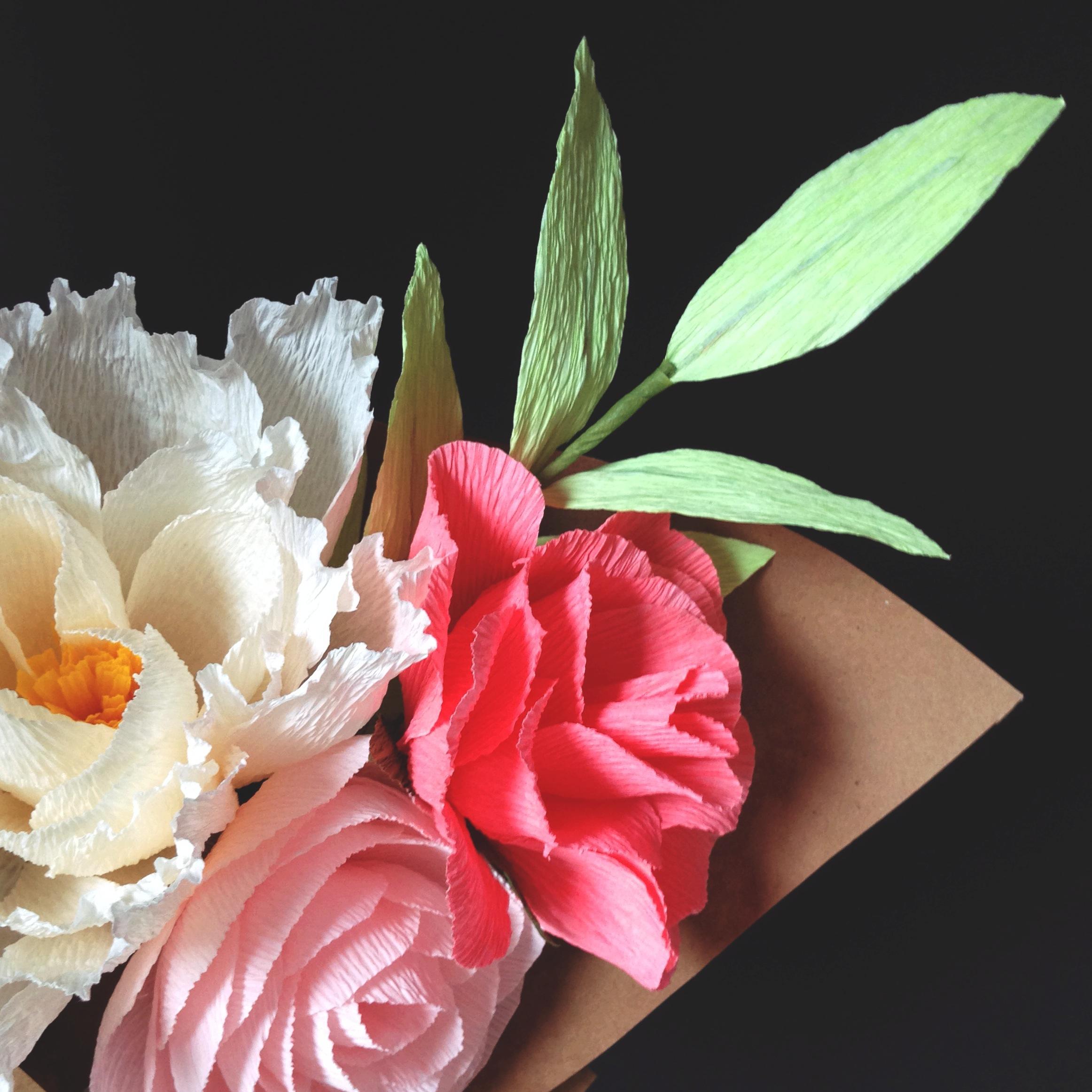 Amaranthus1.jpg