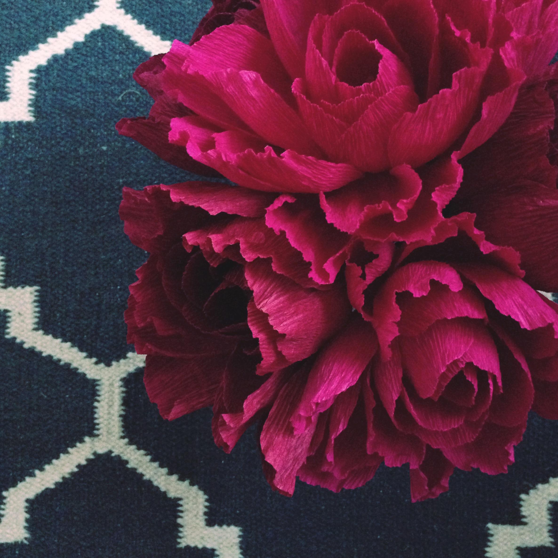 Amaranthus2.jpg