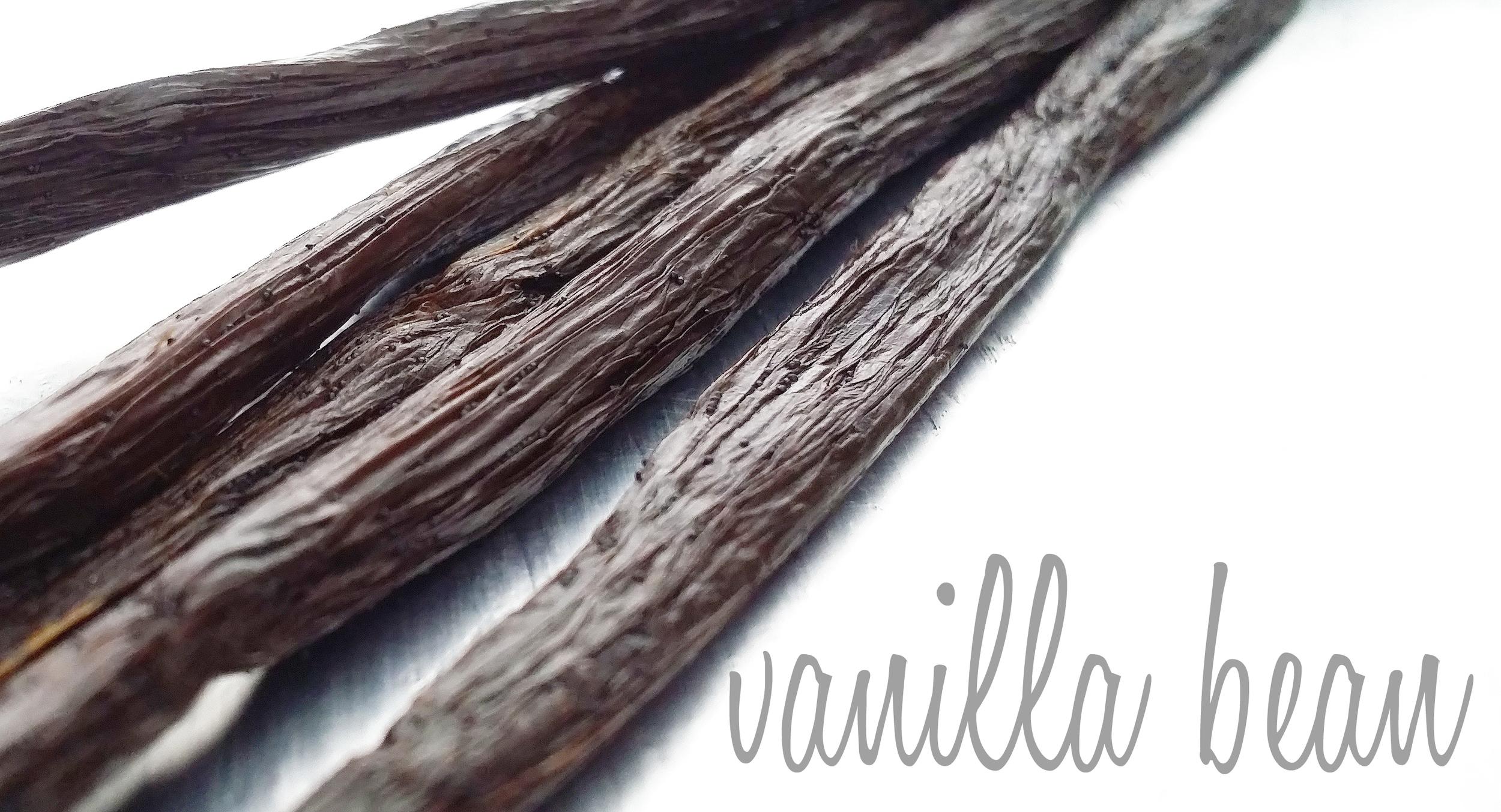 vanilla-display.jpg