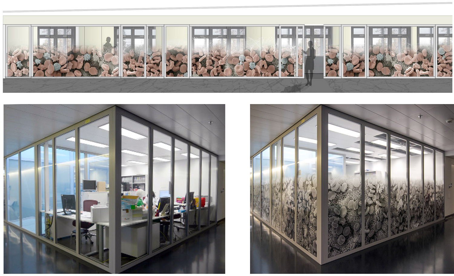 Architectural translations of the microscopic world   Sight protection design for hospital offices