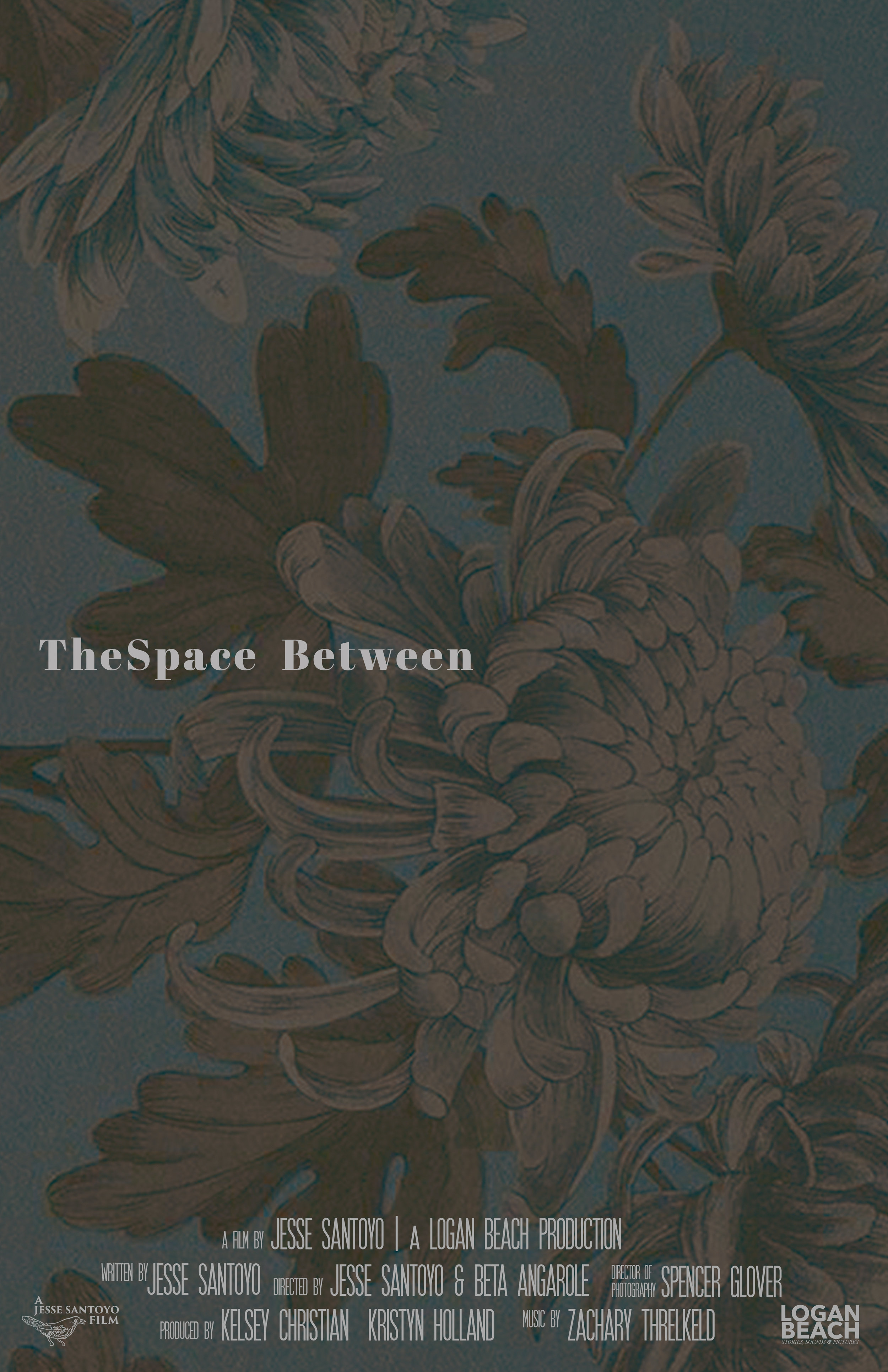 THESPACE BETWEEN POSTER (1).jpg