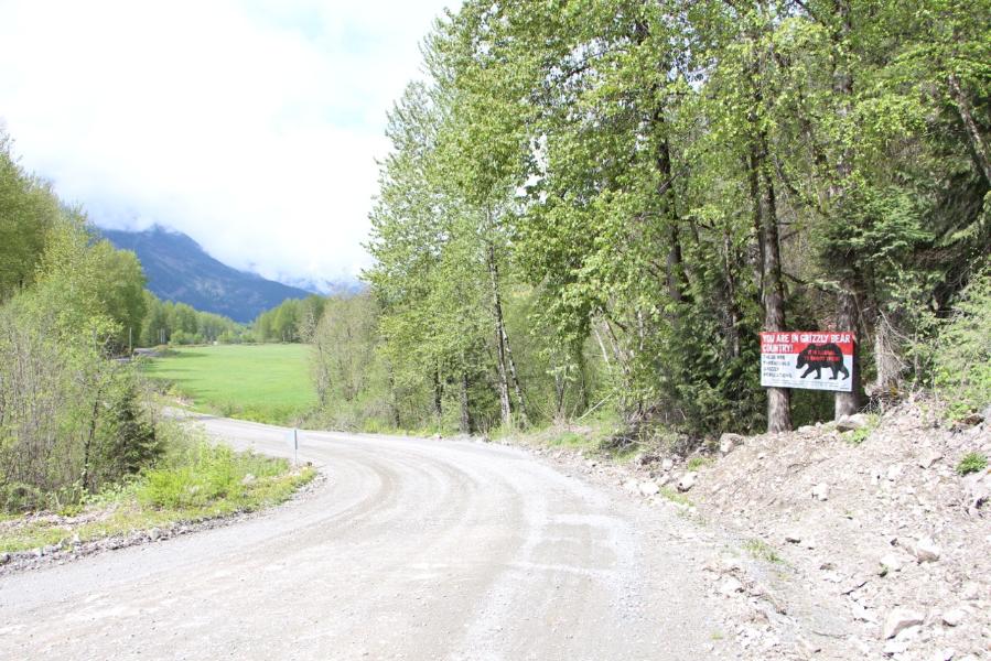 signs_pemb_w_road.jpeg