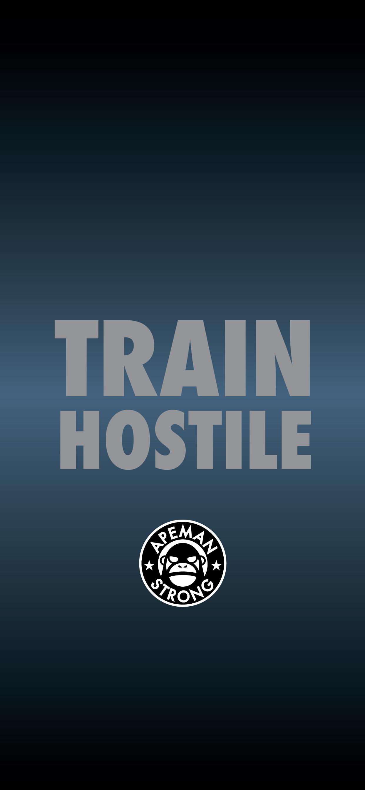 TRAIN-HOSTILE.jpg