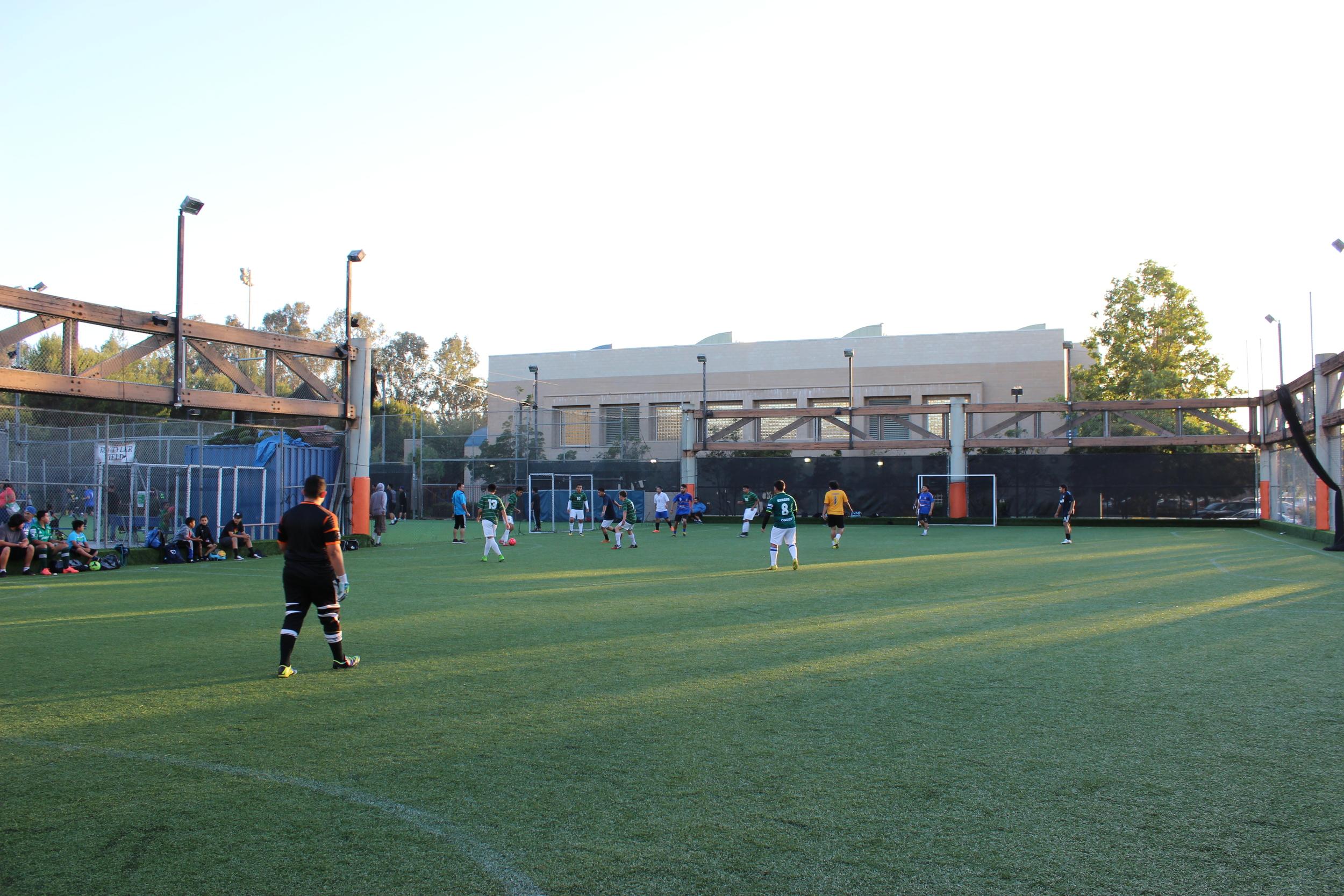 2 Turf Sports Fields