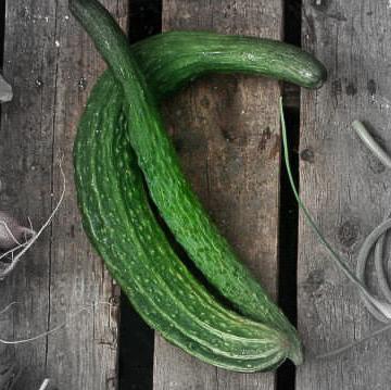 Long cucumber highlighted.jpg