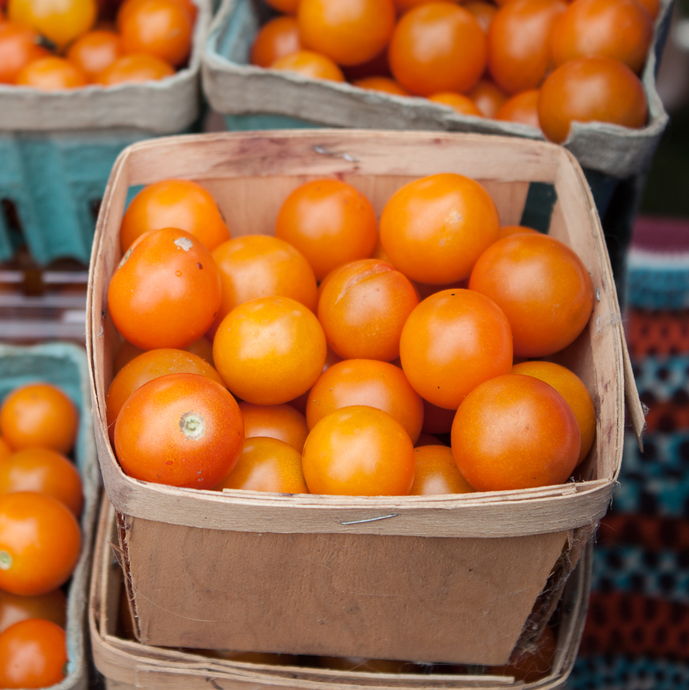 Sungold tomatoes.jpg