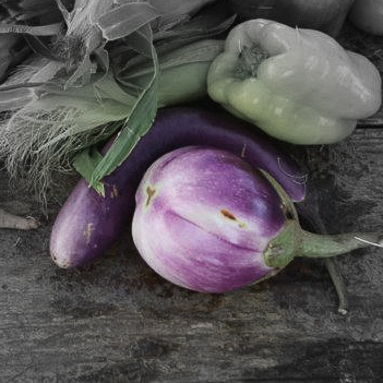 Striped eggplant highlighted.jpg