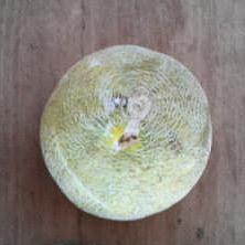 Melon highlighted.jpg