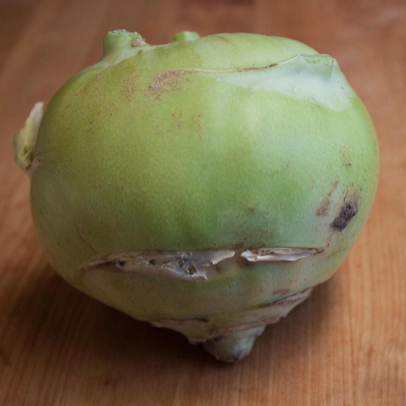 Kohlrabi Highlighted.jpg
