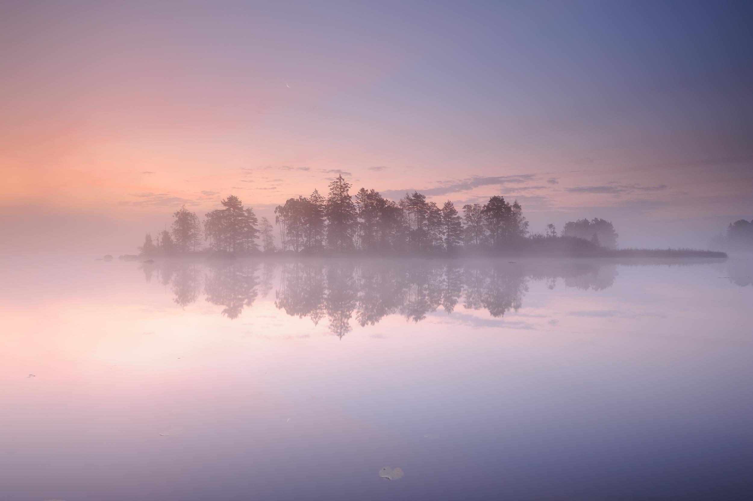 Pink Landscape.png
